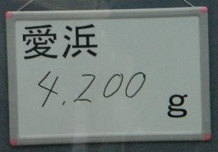 2007031103.jpg